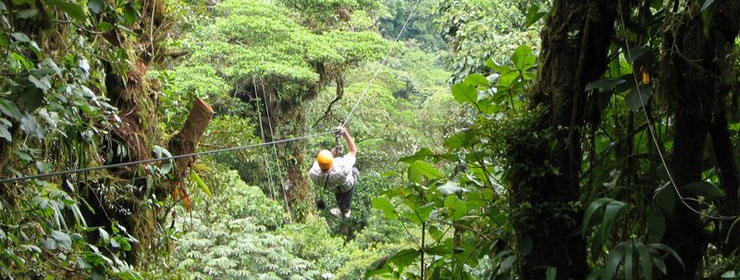 Selvatura Canopy Tour + Tree Top Walks